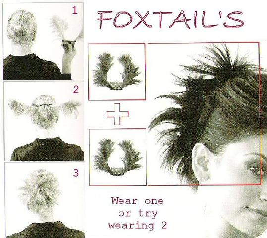 howto-foxtail